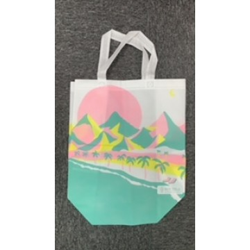 Customized PLA Bag