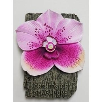 FM-12 Orchid Magnet