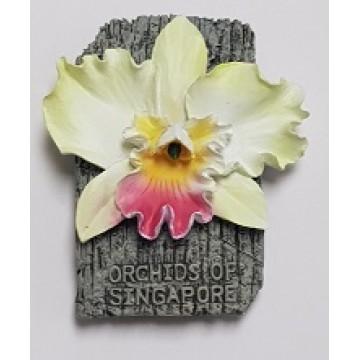 FM-13 Orchid Magnet