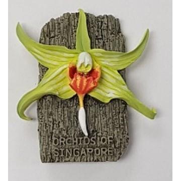 FM-21 Orchid Magnet