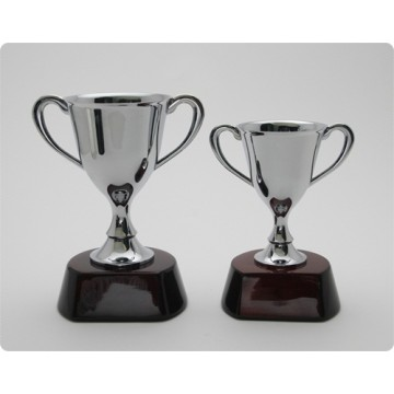 Trophies / Awards