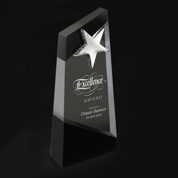 SC16 Duo-tone AceStar Crystal Award