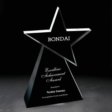 SC20 Glory Star Crystal Award